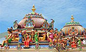 Chennai family Packages