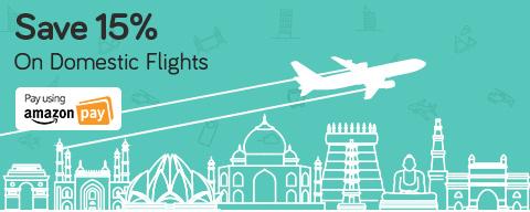 Save on Domestic Flights
